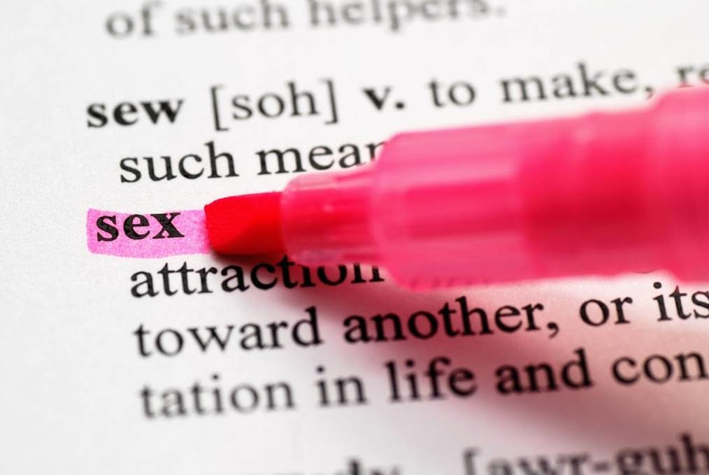the word sex highlighted in dictionary with pink marker pen. Becoming a sexologist blog image.